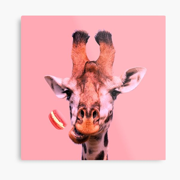 Lovely giraffe with macaron by Alice Monber Metal Print