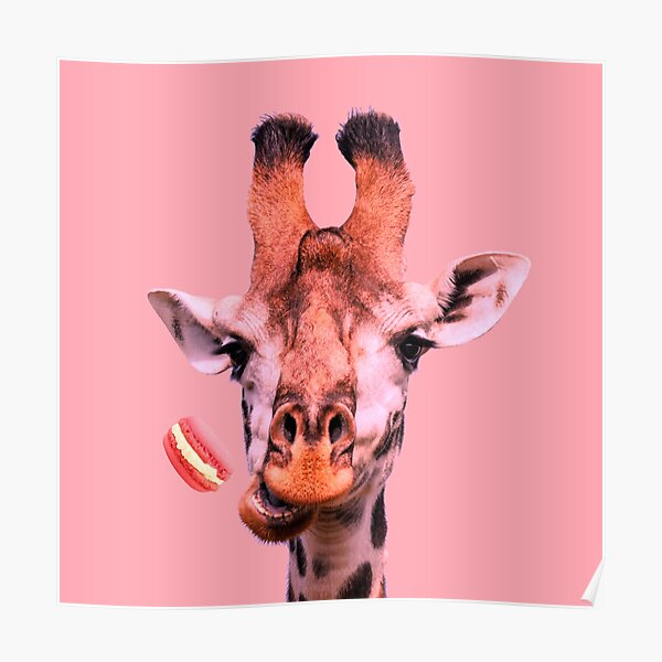 Lovely giraffe with macaron by Alice Monber Poster