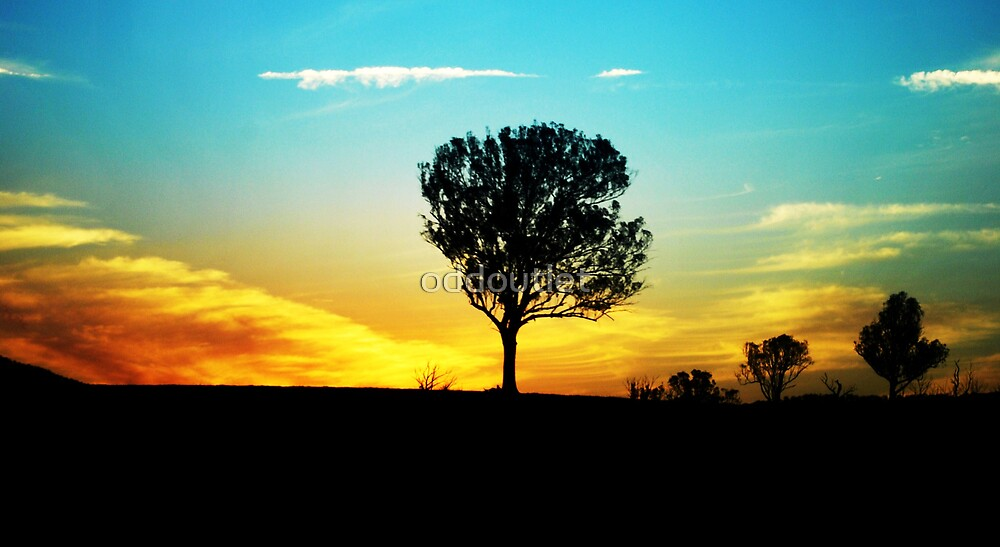 one tree by oddoutlet