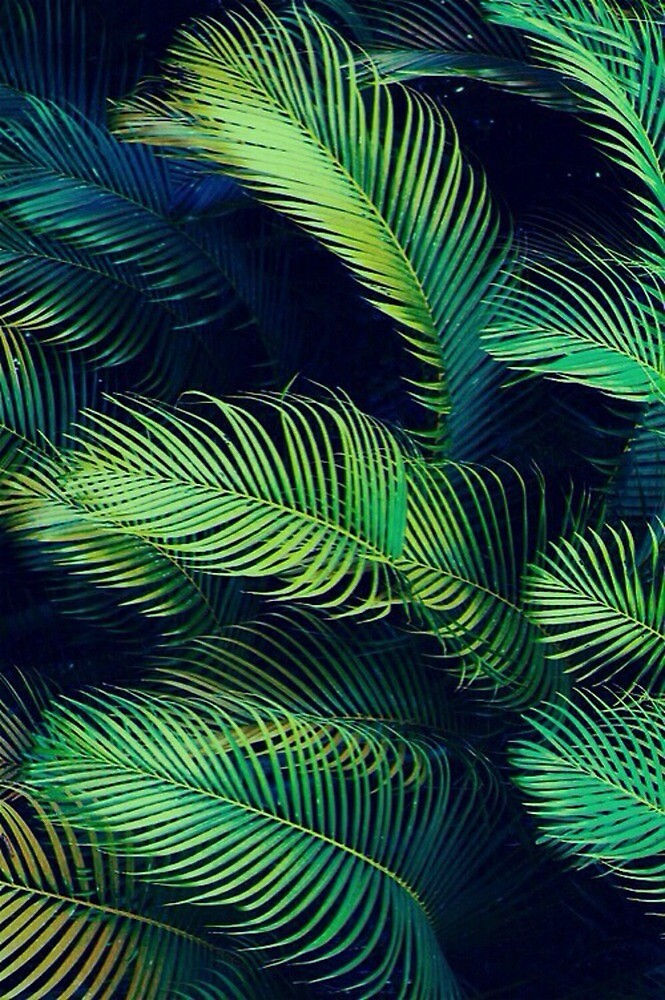 leaves in the jungle by Chxrlxttxx