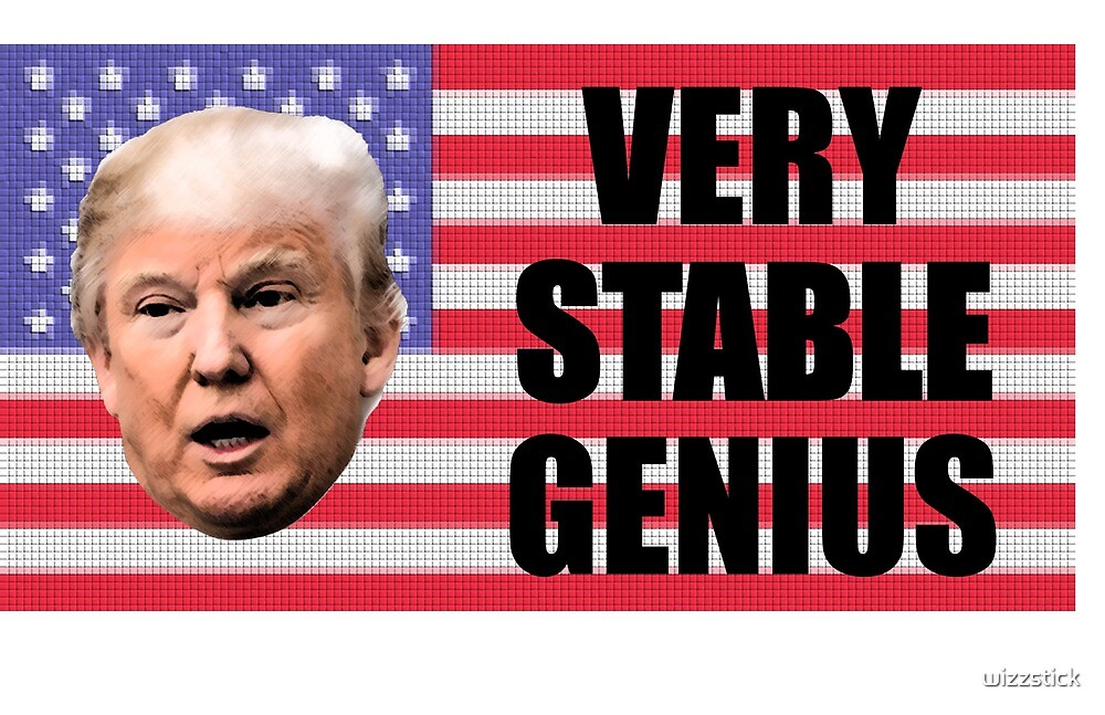 Very Stable Genius by wizzstick