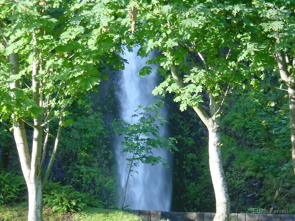 Horsetail Falls by Edith Farrell