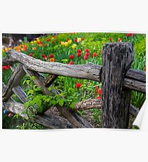 Central Park Shakespeare Garden New York City NY Wooden Fence Poster