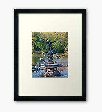Central Park Water Fountain New York NY Framed Print