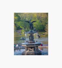 Central Park Water Fountain New York NY Art Board