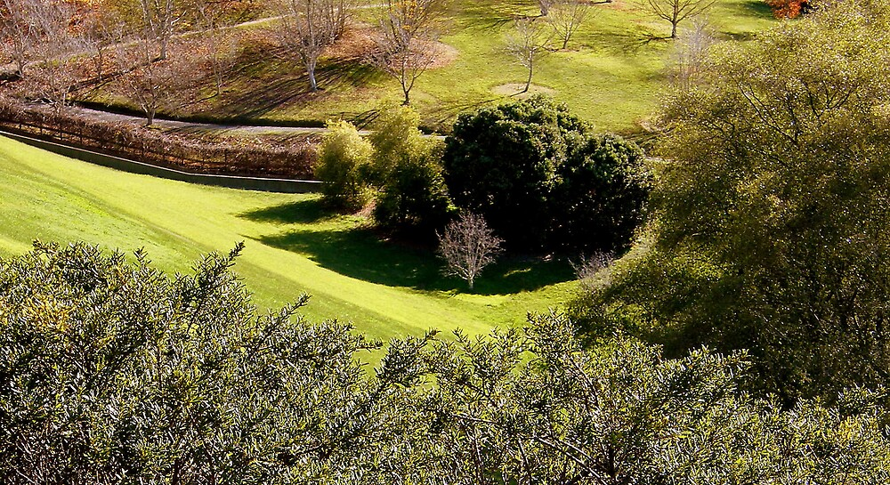 Green scene by Kablwerk