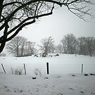 A long Winter by chrstnes73