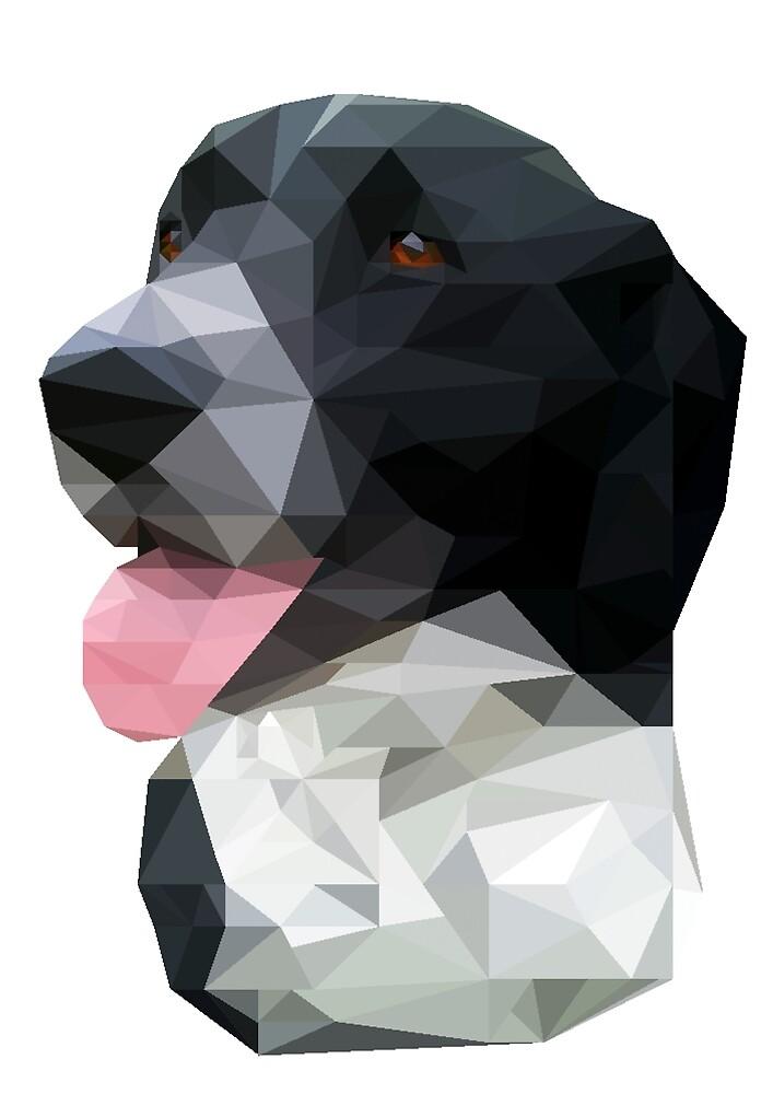 Canis Maximus by VinylUndKoffein