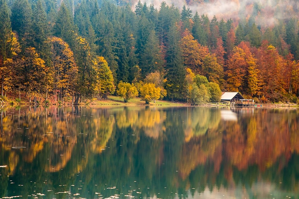 Autumn foliage at the alpine lake by zakaz86