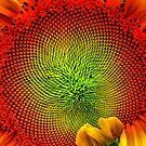 Stunflower by Roboftheland