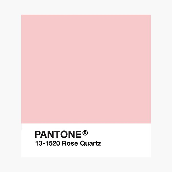 Pantone Series and Tumblr Vibes - Rose Quartz AKA Millennial Pink Photographic Print