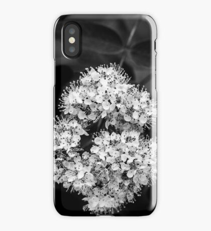 SUCTION [iPhone-kuoret/cases] iPhone Case