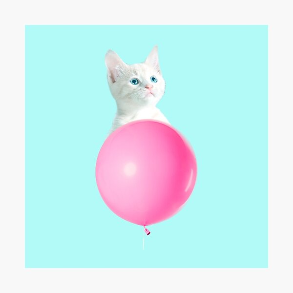 White Cat's Travel by Pink Balloon by Alice Monber Photographic Print