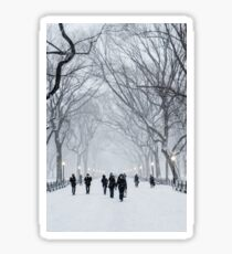 Winter in Central Park Sticker