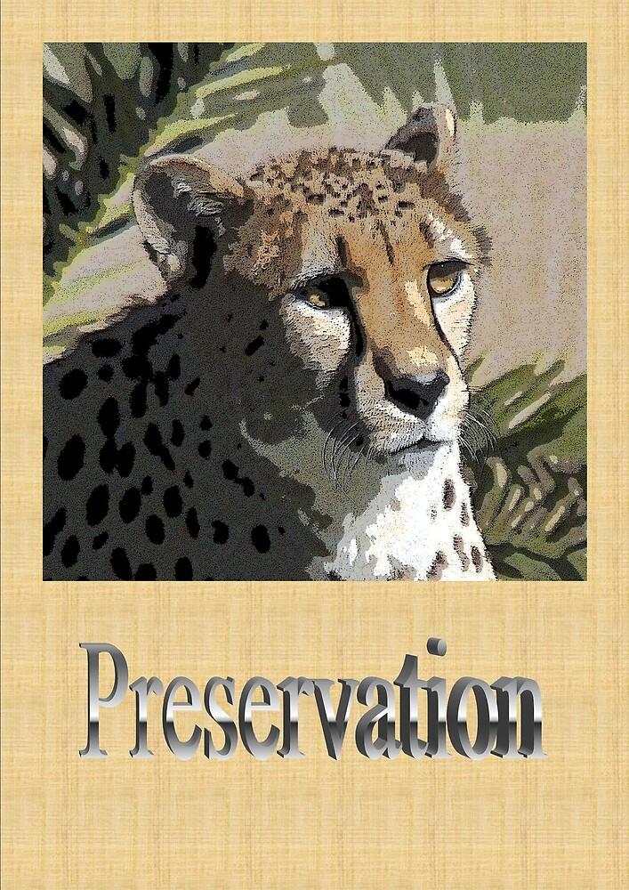 PRESERVATION by JDeVereS