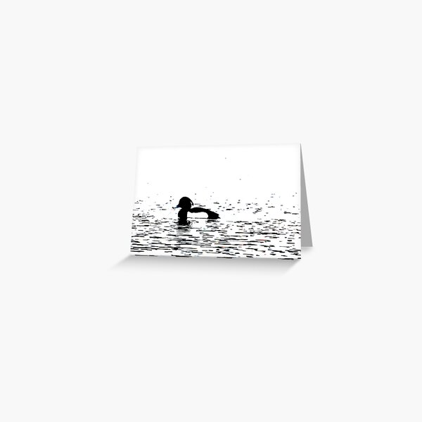 Stylized Tufted Duck artwork Waterbird Collection Greeting Card