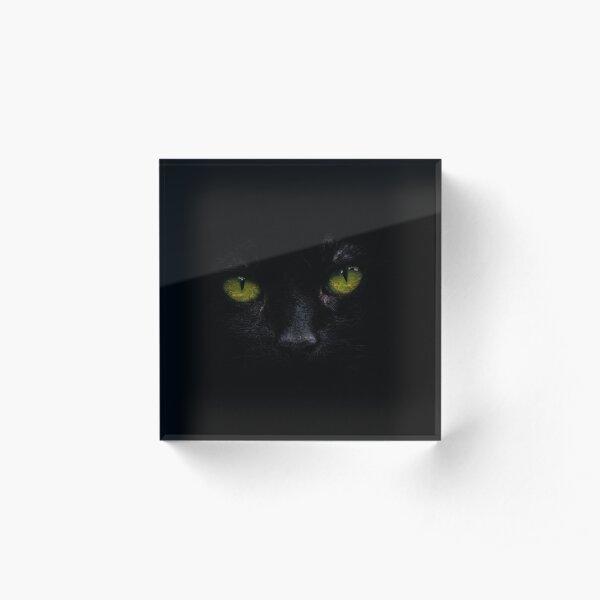 ANIMAL LOVERs, Animal Third Eye, Eye of The Panther,Eye of The Tiger,Eye of The Cat, Acrylic Block