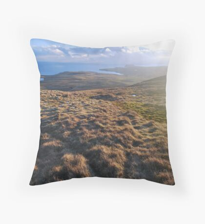 brand new year Throw Pillow