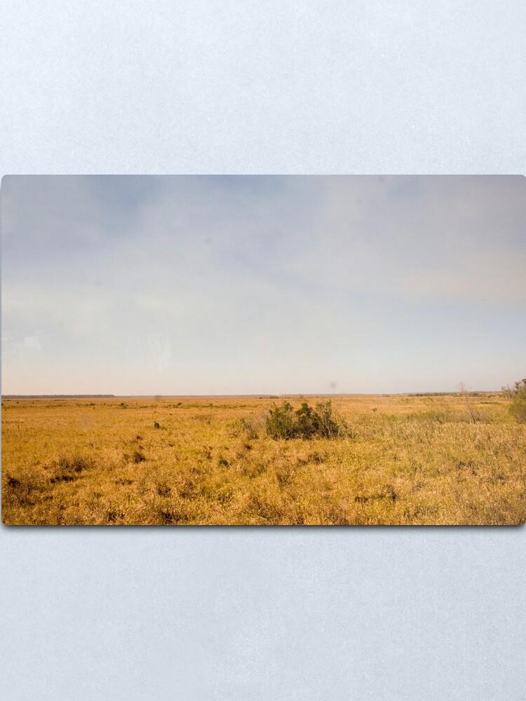 Alternate view of Louisiana Fields Metal Print