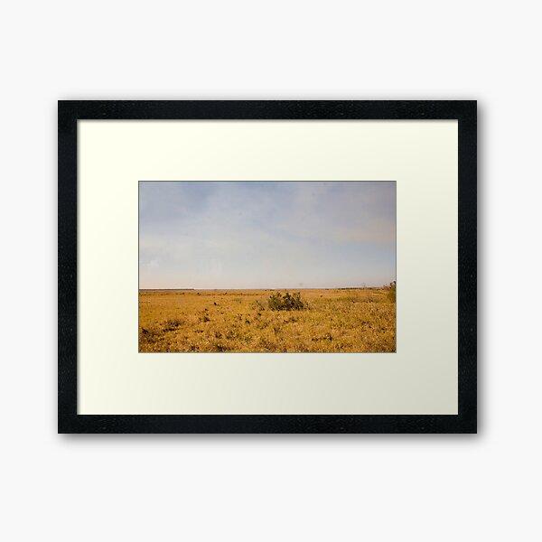Louisiana Fields Framed Art Print