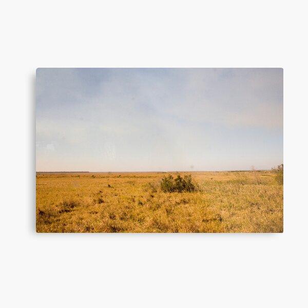Louisiana Fields Metal Print