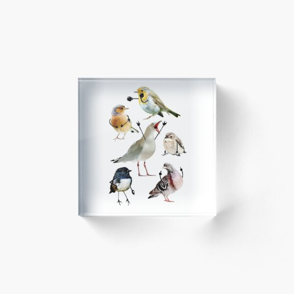 Birds With Arms Acrylic Block