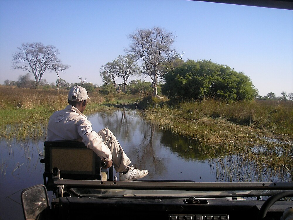 Spotter on a Game Drive by Jan  Saggers