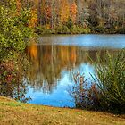 Fall Reflections by ctheworld