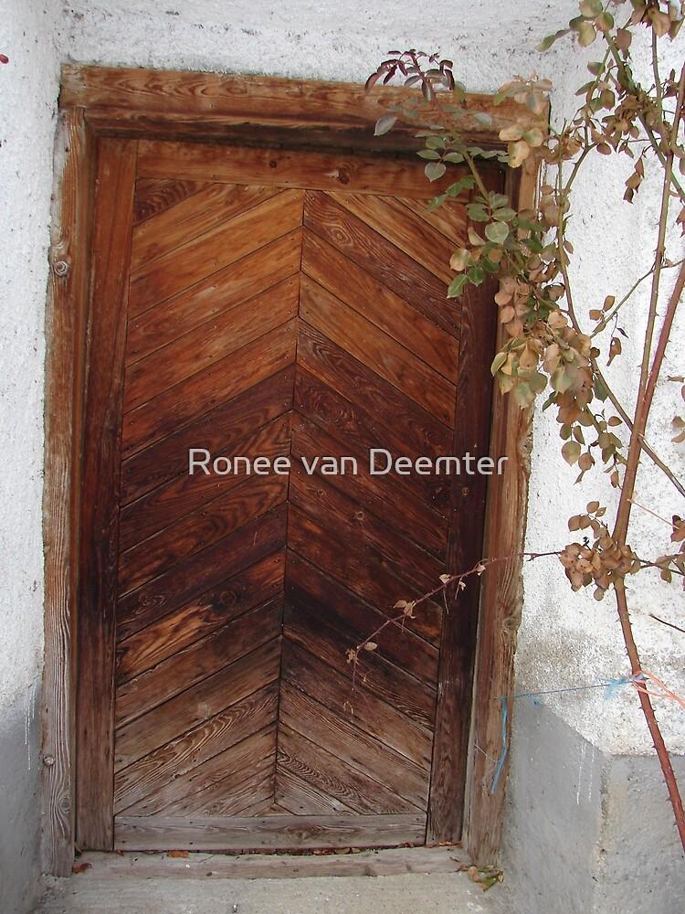 Door in the Snow by Ronee van Deemter