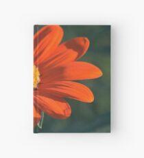 Rote Chrysantheme Notizbuch
