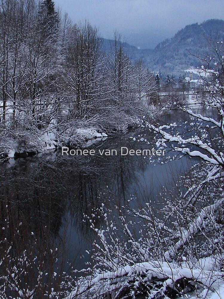 Snowfall in Austria by Ronee van Deemter
