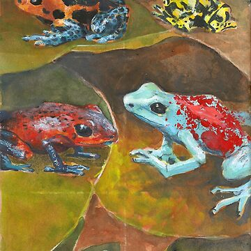 Cute and Colorful Poison Dart Frogs  by EricaBottger