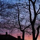A Winter Sunrise on Tyneside by MidnightMelody