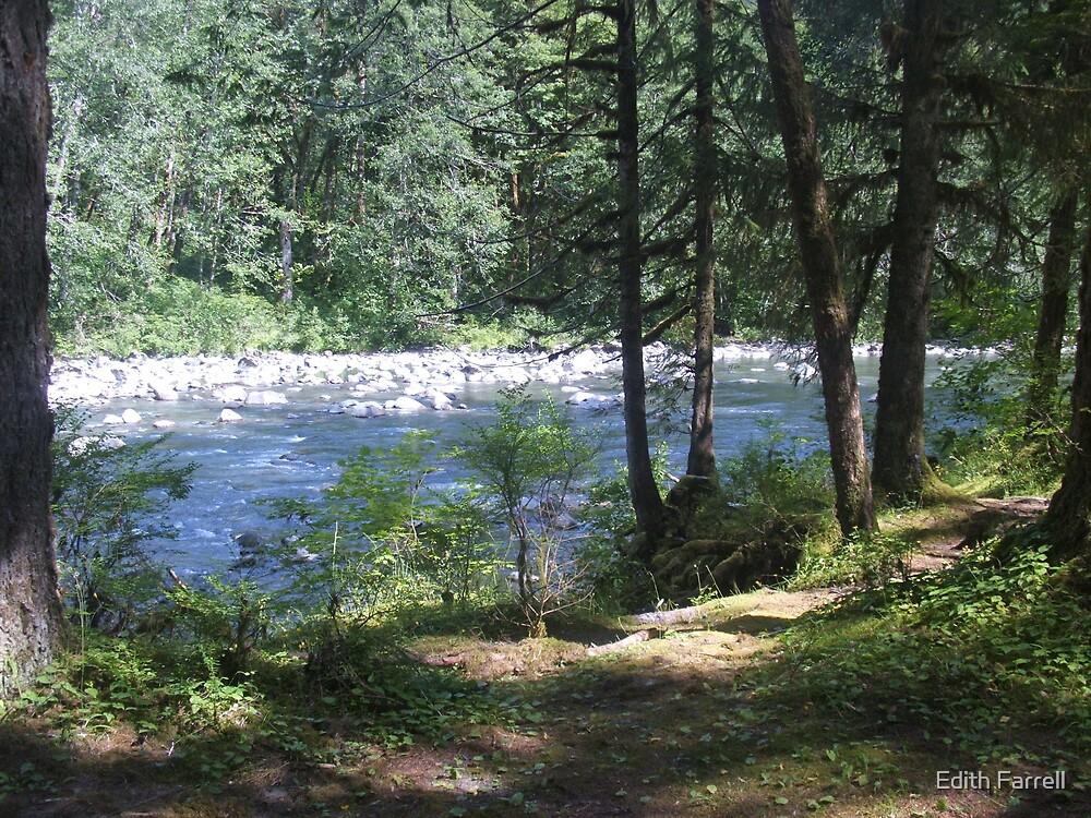 Hemple Creek Picnic Area by Edith Farrell