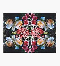 Sacred Geometry Photographic Print