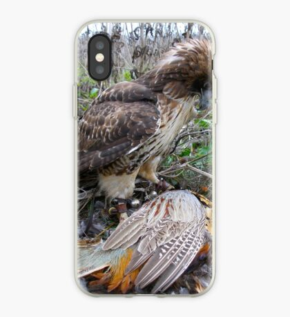 Red Tail Hawk and Pheasant  iPhone Case