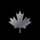 Maple Leaf by fuxart