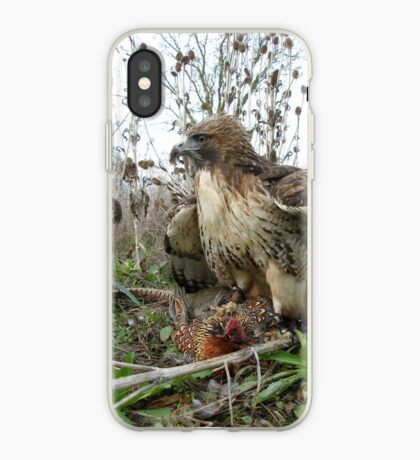 Red Tailed Hawk on a Pheasant iPhone Case