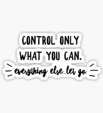 Control what you can, everything else let go Sticker