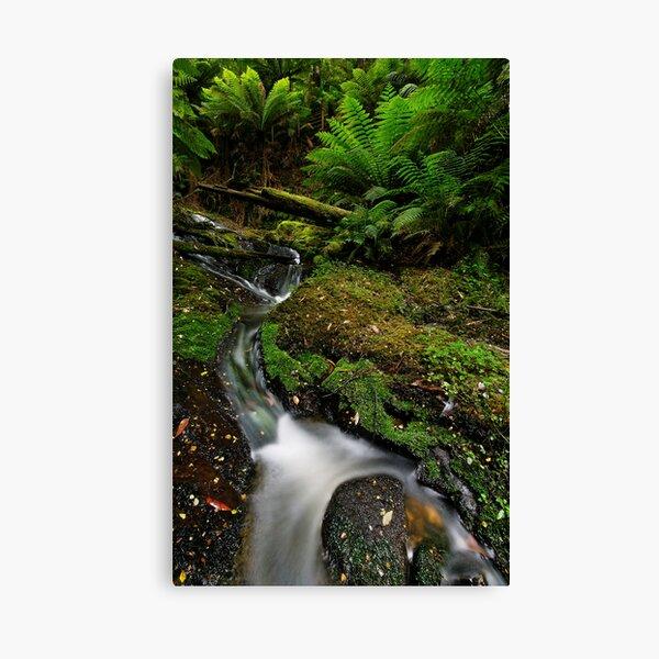 Mini Bulga Falls Canvas Print
