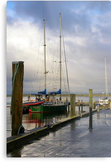 Macquarie Harbour by Cheryl Ribeiro