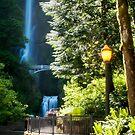 Bench, Multnomah Falls, Oregon by Harv Churchill