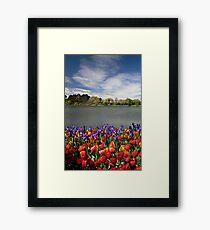 Floriade Framed Print