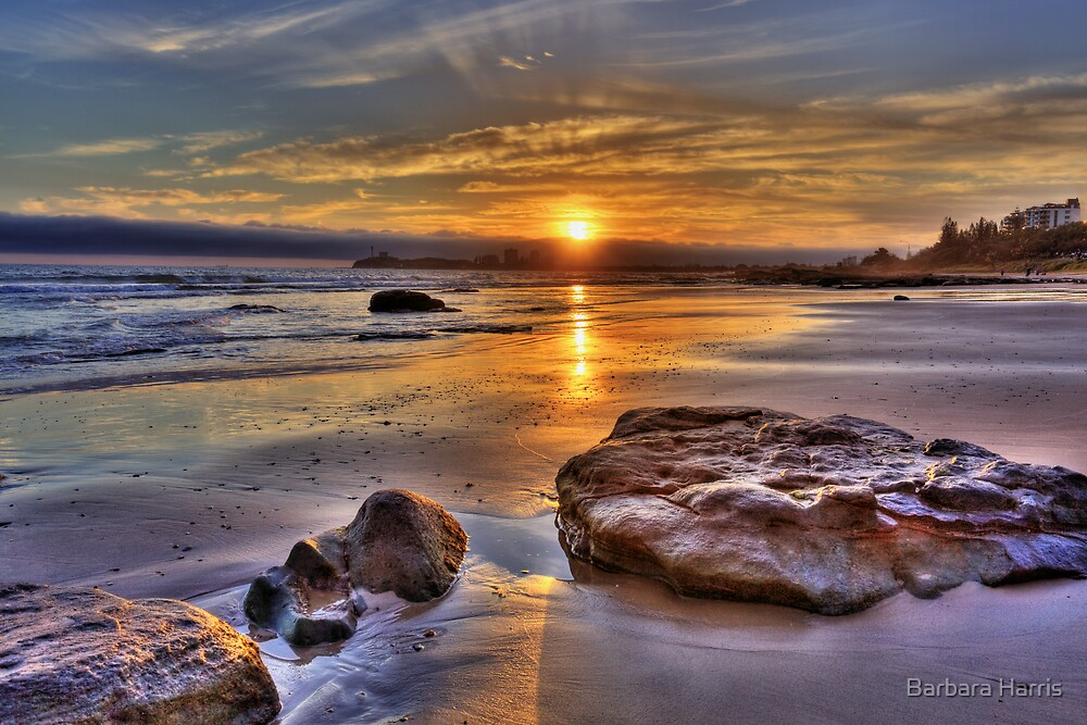 First Sunrise for 2009-0337 by Barbara Harris