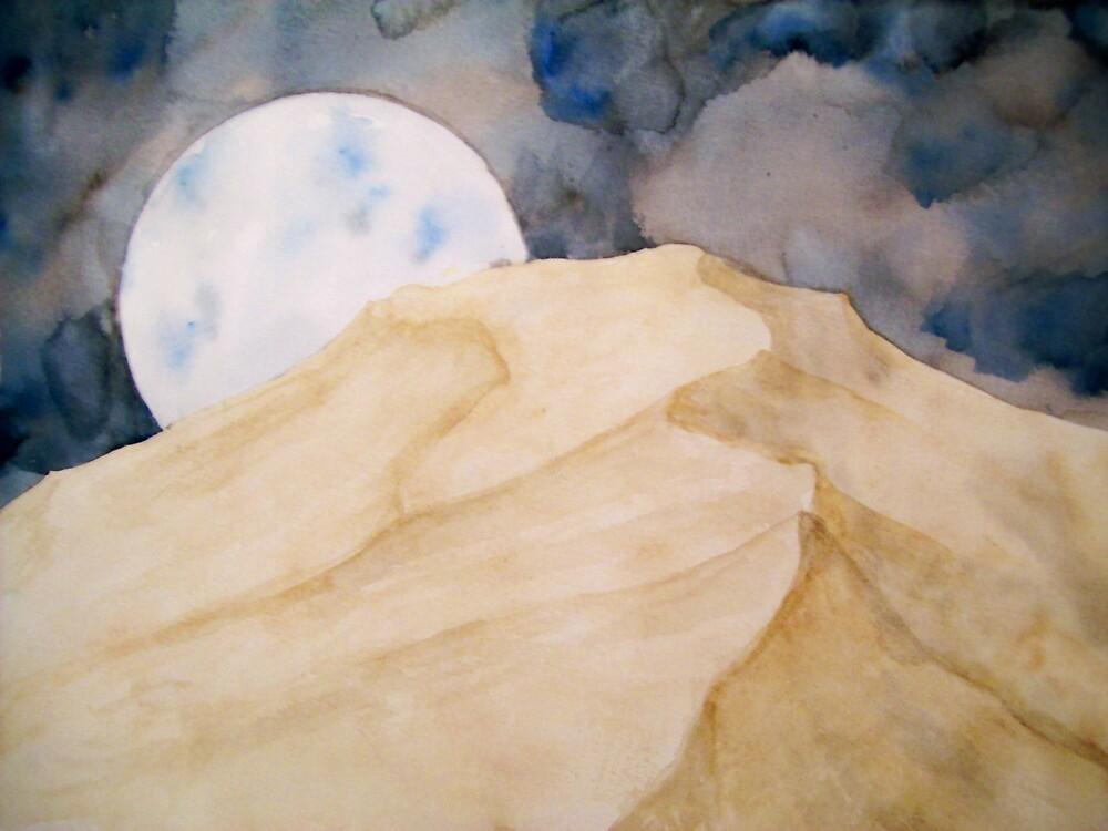 wild desert night by Dana O'Pray