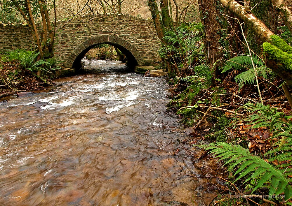 Down in the Exmoor Combe by Lorraine Parramore