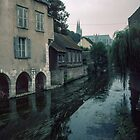 Houses on the edge of L'Eure with flowers Chartres France 19840825 0042  by Fred Mitchell