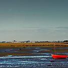 Dublin boat by DeirdreMarie