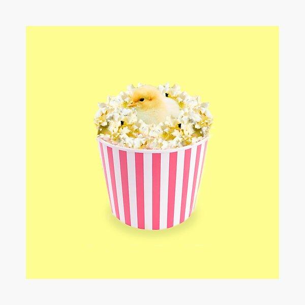 Little Chicken Popcorn by Alice Monber Photographic Print