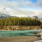 The Icefields Parkway by Amanda White